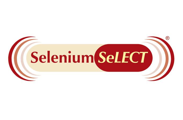 Selenium Select